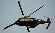 NH IndustriesNH 90 TTH©Heli Pictures