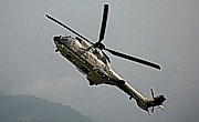 Airbus HelicoptersAS 532 UL Cougar MK-1©Heli Pictures