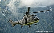 Airbus AS 532 UL Cougar MK-1  ©  Heli Pictures